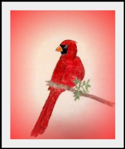 After making a charcoal sketch, I decided to color this cardinal. I then added the background with a photo program.