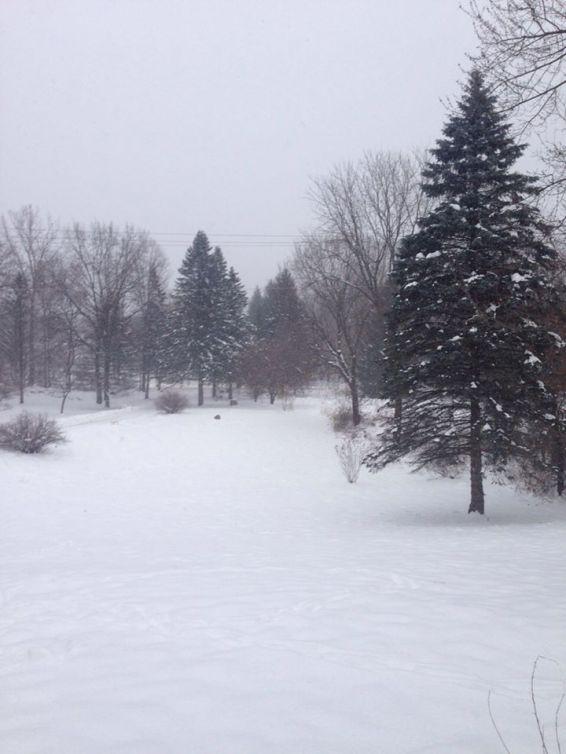 clarkston-snow-2