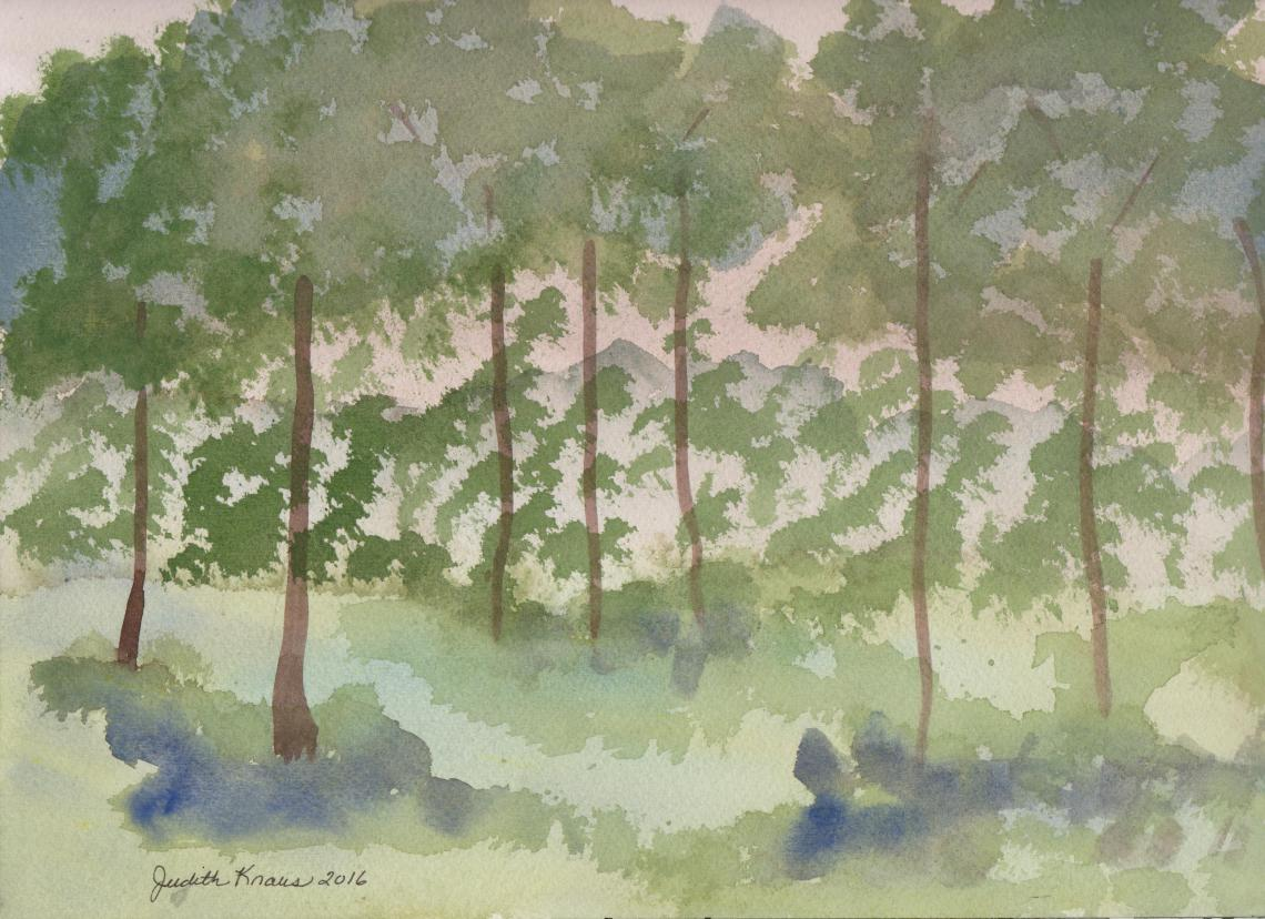Watercolor 160702 Grove of Trees